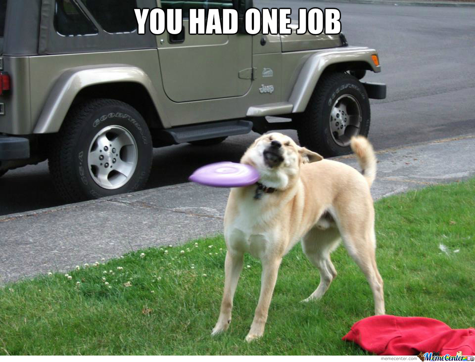 you-had-one-job-dog o 1668841