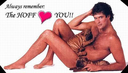 Hoff-loves-you