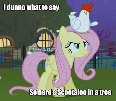 Why is the tree on Fluttershy 7fa719c3e9