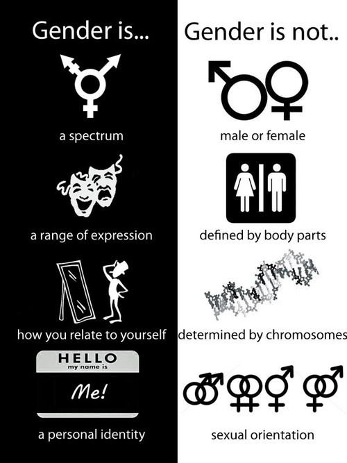 gender-is-gender-is-not