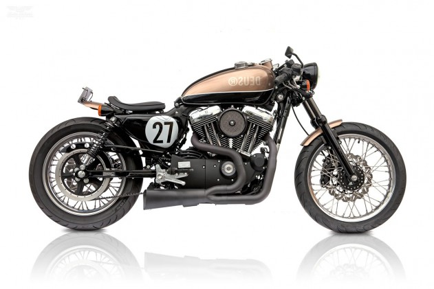 HD-Sportster-Bald-Terrier-by-Deus-Ex-Mac