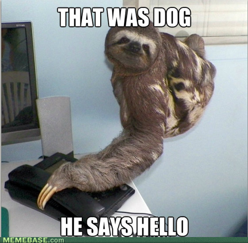 tbmhqEP internet-memes-yes-this-is-sloth