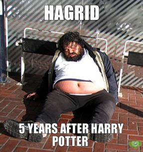 hagrid-5-years-after-harry-potter-thumb