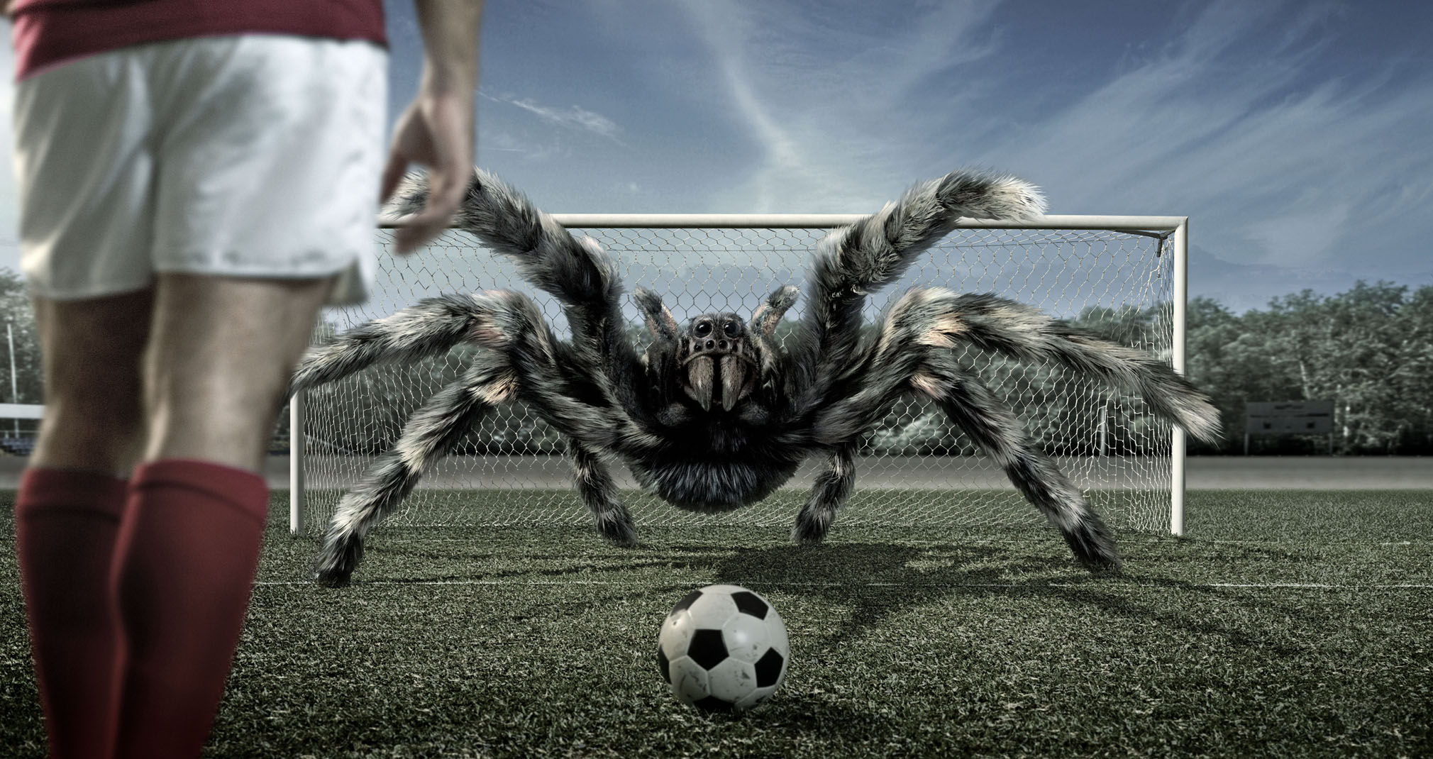846-giant-spider-goal-keeper-hd-wallpape