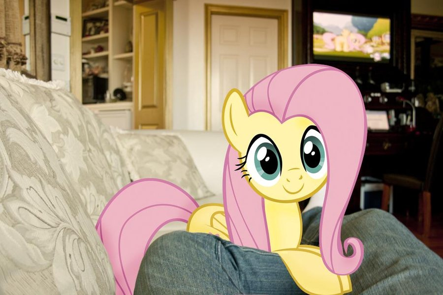 fluttershy  s on my couch by ilovemyipod