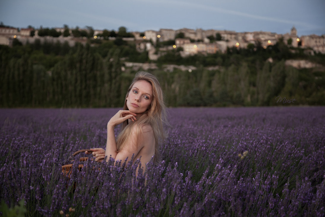 lavender nights by muse1908-d7s72dw