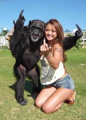 hot-chick-and-crazy-monkey