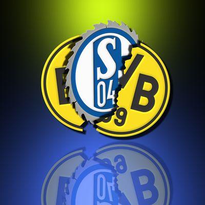 s04 bvb
