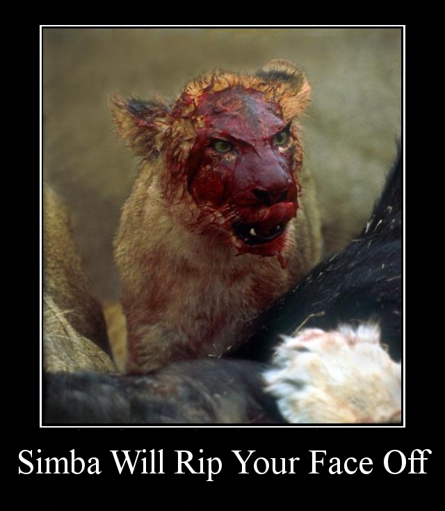 simba-will-rip-your-face-off