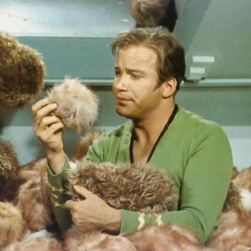StarTrek Trouble With Tribbles