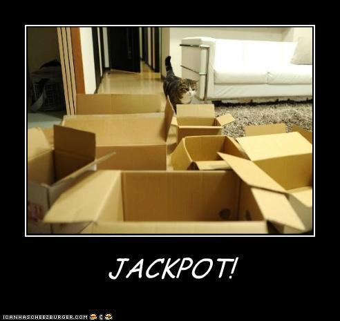 te2Rzea funny-pictures-jackpot