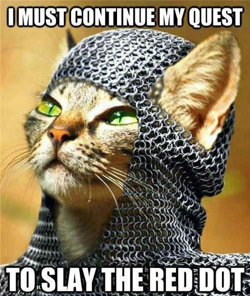 Knight-Cat-Meme