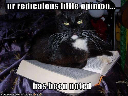 funny-pictures-cat-has-noted-your-ridicu