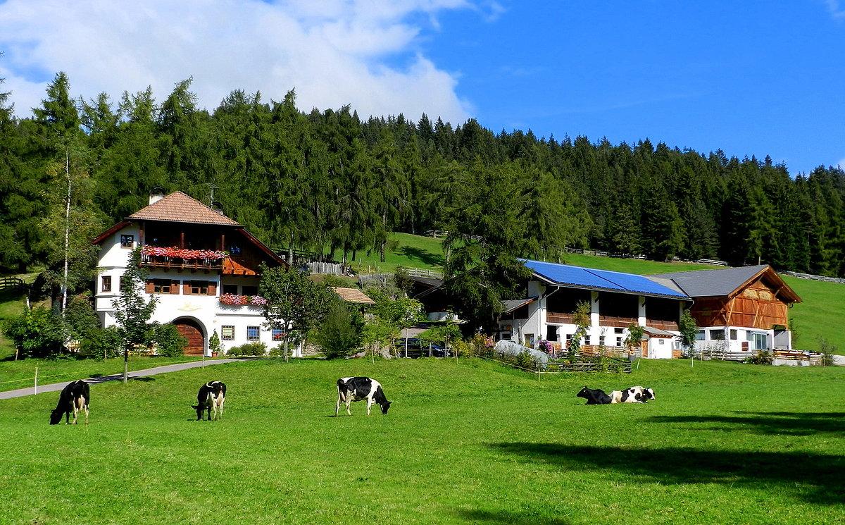 Bauernhof Aufbauen
