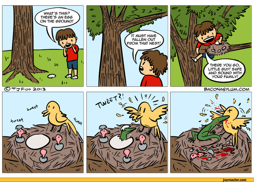 comics-baconasylum-boy-egg-833984.jpeg
