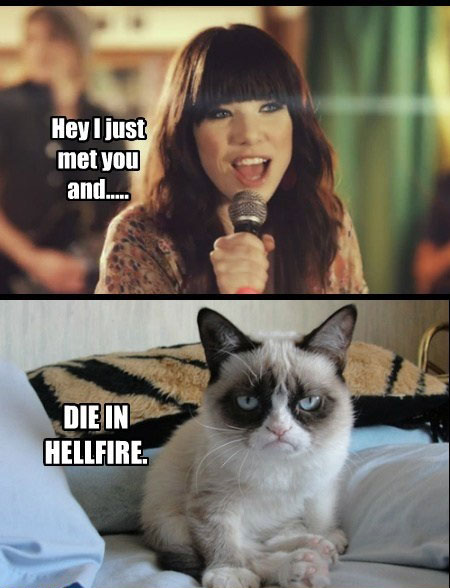 Carly-Rae-Jepsen-VS-Grumpy-Cat