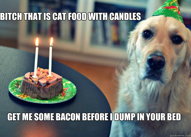 Sad-Birthday-Dog-bitch-that-is-cat-food-