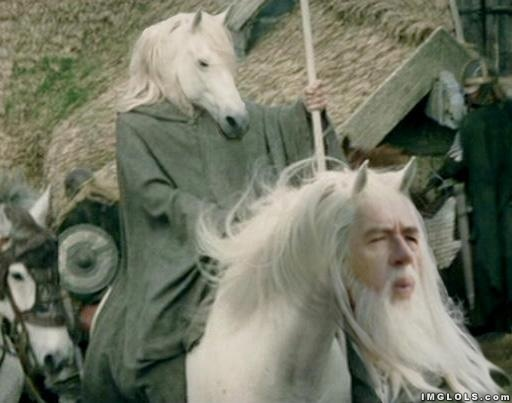 horse-gandalf-lord-of-the-rings-meme