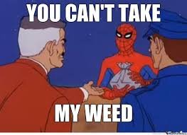 Ohspidermanpieceofshitfuckingstoner 546b