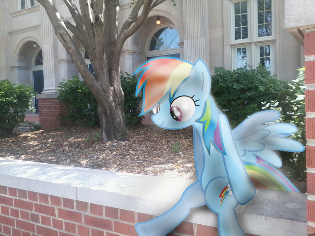 rainbow dash sitting in front of my scho