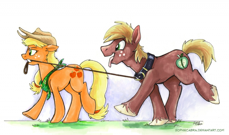 walkies  by sophiecabra-d8fvsdq