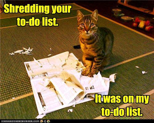 tgAWRi0 funny-pictures-shredding-your-to-do-list