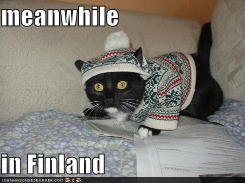 thDI9d3 funny-pictures-meanwhile-in-finland
