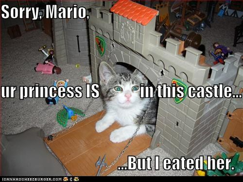 funny-pictures-sorry-mario-ur-princess-i