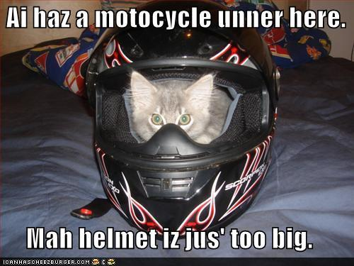 tmUKdlY funny-pictures-ai-haz-a-motocycle-unner-