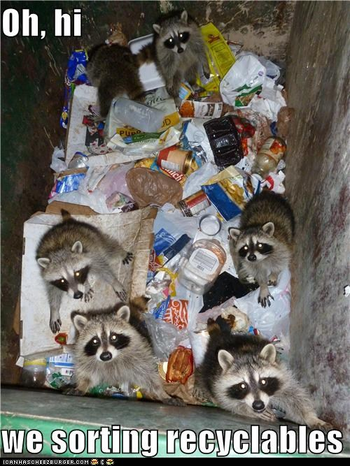 tn0qblB funny-pictures-oh-hi-we-sorting-recyclab
