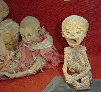 Das Geheimnis der Mumien (Seite 9) - Allmystery Real Egyptian Baby Mummies