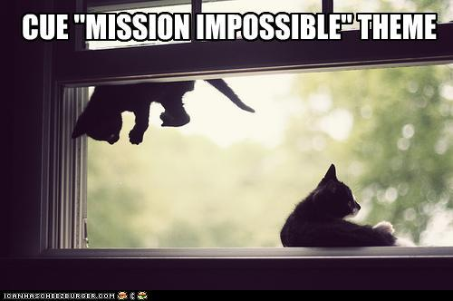 trfd2oT funny-pictures-cue-mission-impossible-th
