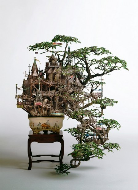ApjpzP 2 aiba bonsai-b view11