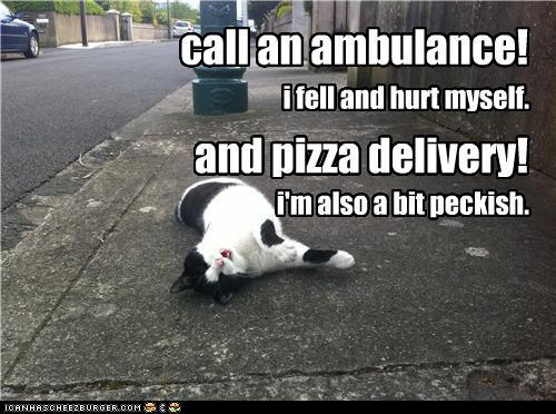 ttnTPtb funny-pictures-call-an-ambulance-and-piz