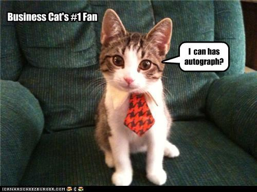 tuxIWrY funny-pictures-business-cats-fan