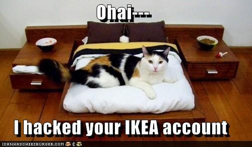 txI44bk funny-pictures-ohai-i-hacked-your-ikea-a
