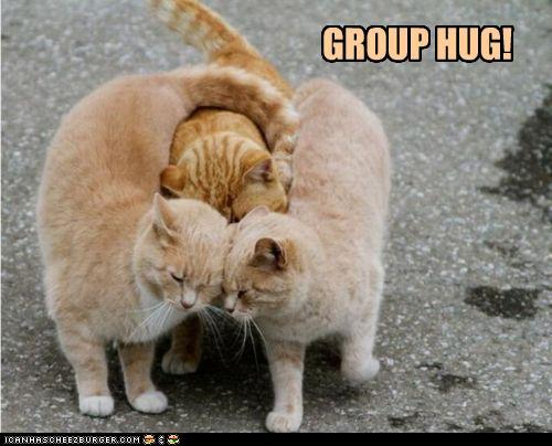 tyJSZdx funny-pictures-group-hug