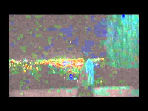 Youtube: Ufo sightings 2011: Jerusalem