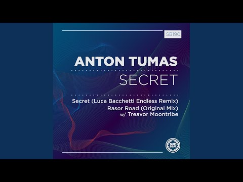 Youtube: Secret (Luca Bacchetti Endless Remix)