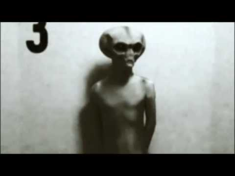 Youtube: Real Grey Alien Footage Caught On Tape