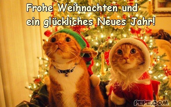 Ich wünsche euch allen schöne Weihnachten und kommt gut nach 2016 ...