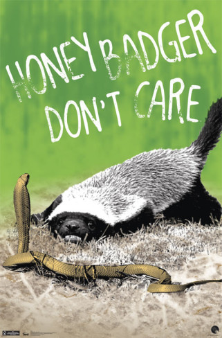 honey-badger-don-t-care