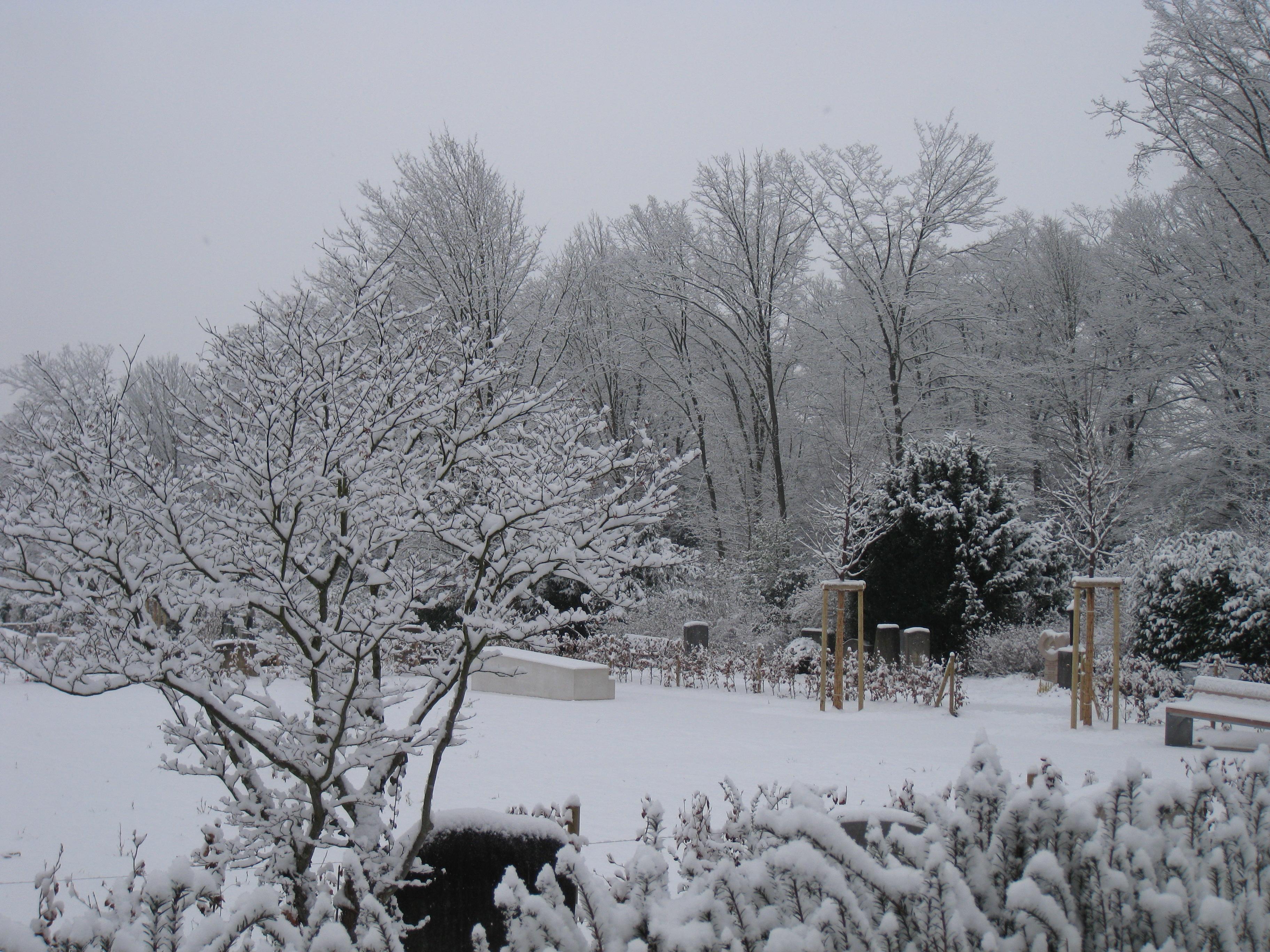 Die einzigartige magie eines friedhofs seite 6 allmystery - Schneebilder kostenlos ...