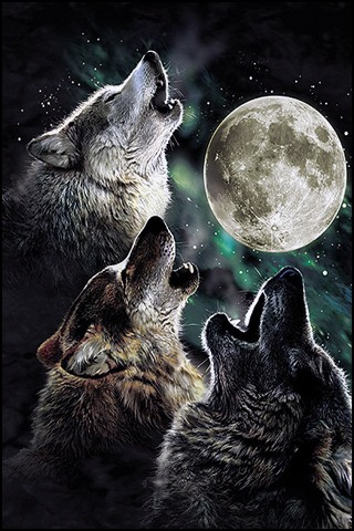 4995-howling-at-the-moon