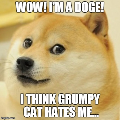 doge hated by grumpy cat