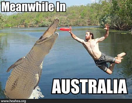 592-Meanwhile in australia