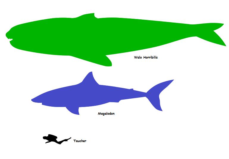 Lebt der Megalodon noch? (Seite 145) - Allmystery