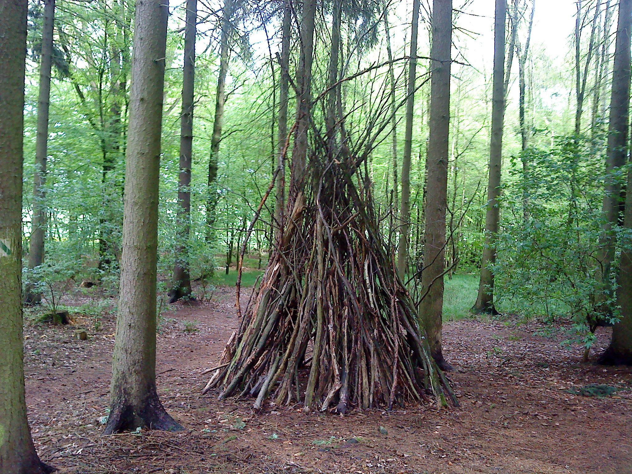 Obskure Holzhaufen Im Wald